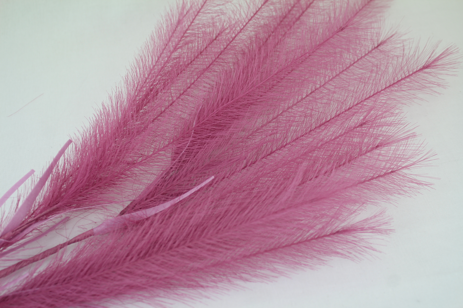 12 FOR THE PRICE OF 10! 12 x Artificial Feather Sprays